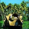 केरल: जहां प्रकृति के साथ झूमने को जी चाहे