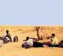 डेजर्ट ट्रेकिंग: रेत पर बंजारा सफर