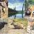 बाघों के घर हाथियों की मौज पेरियार वाइल्डलाइफ सैंक्चुरी