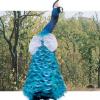 कान्हा  में पक्षी रचते है संगीत