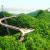 लांगकवी के स्काई ब्रिज का मजा